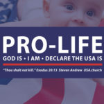 Declare the USA Is Pro-life